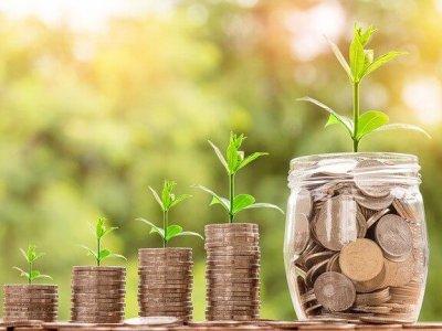Pflanzen und Geld wachsen